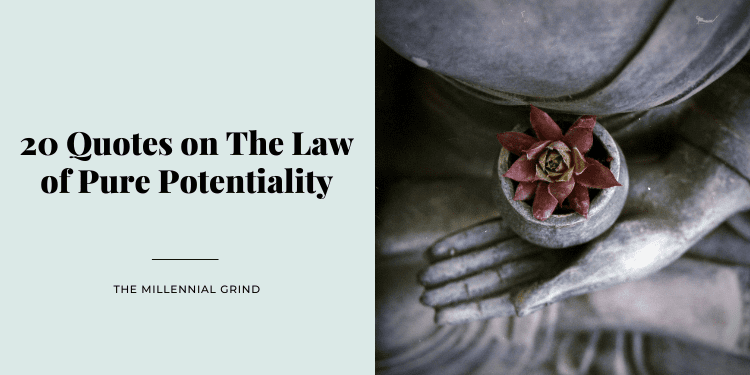 20 Quotes on The Law of Pure Potentiality